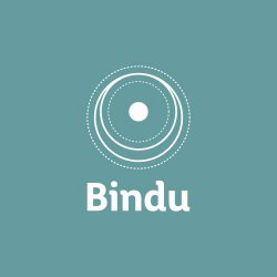 Bindu logo