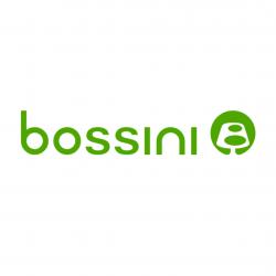 Bossini Alba Iulia logo