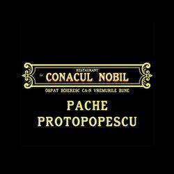 Conacul Nobil Pache logo
