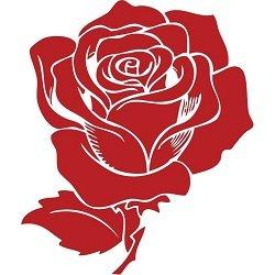 Aranjamente trandafiri de sapun logo