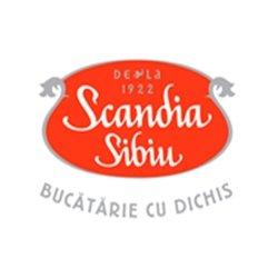 Scandia Sibiu Vitan logo