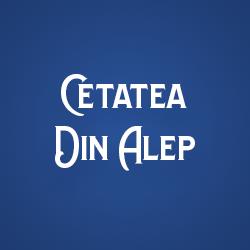 Cetatea din Alep logo