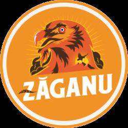 Bere Artizanală Zăganu logo