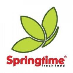 Springtime Gara de Nord logo