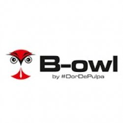 B-Owl logo