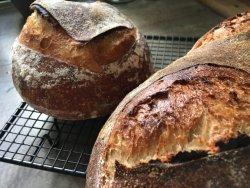 Pâine cu maia image