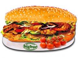 Sandwich doner kebab pui big image