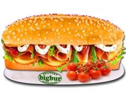 Sandwich prosciutto crudo normal image