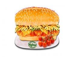 Sandwich krispy chicken normal image