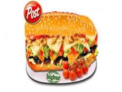 Sandwich vegetarian normal image